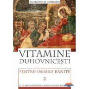 Vitamine duhovnicesti pentru inimile ranite - Volumul 2 . Zi de zi cu Hristos de-a lungul anului bisericesc