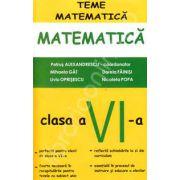 Matematica pentru clasa a VI-a, teme de matematica (Petrus Alexandru)