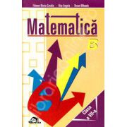 Matematica clasa a VII-a (Culegere de probleme)