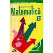 Matematica clasa a VI-a (Culegere de probleme)