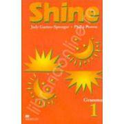 Shine Level 1 Grammar. Gramatica limbii engleze pentru clasa a VI-a