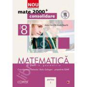 Mate 2000 pentru clasa a VIII-a. Partea I, CONSOLIDARE. Matematica - Algebra, geometrie