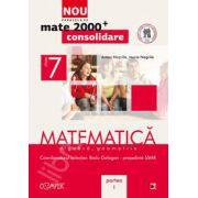 Mate 2000 pentru clasa a VII-a. Partea I, CONSOLIDARE. Matematica - Algebra, geometrie