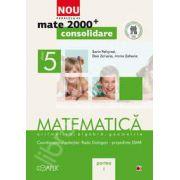 Mate 2000 pentru clasa a V-a. Partea I, CONSOLIDARE. Matematica, aritmetica, algebra, geometrie
