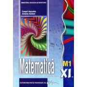 Matematica (M1) manual pentru clasa a XI-a (Andas Szilard)