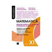 Matematica clasa a XI-a. Breviar teoretic cu exercitii si probleme rezolvate