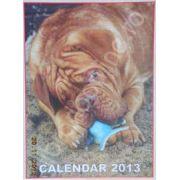 Calendar triptic 2013 de perete (Imagini cu caini)