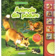 Animale din padure (Vocile adevarate ale animalelor!)