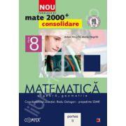Mate 2000 pentru clasa a VIII-a. Partea a II-a, CONSOLIDARE. Matematica, algebra, geometrie
