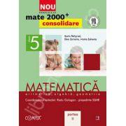 Mate 2000 pentru clasa a V-a. Partea a II-a, CONSOLIDARE. Matematica, aritmetica, algebra, geometrie