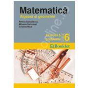 Matematica (Algebra si geometrie). Exercitii si probleme pentru clasa a 6-a