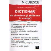 Dictionar de sinonime si antonime in context