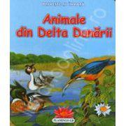 Priveste si invata. Animale din Delta Dunarii