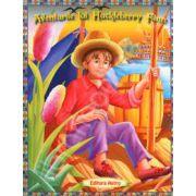 Aventurile lui Huckleberry. Poveste ilustrata
