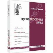 Fise de procedura civila (Andreea Ciurea)