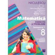 Matematica. Exercitii si probleme, clasa a VIII-a - Semestrul 1