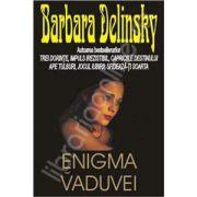 Enigma vaduvei (Delinsky, Barbara)