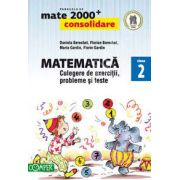 Mate 2000. Matematica CONSOLIDARE, culegere de exercitii probleme si teste, pentru clasa a II-a