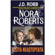 Vizita Neasteptata (Nora Roberts)