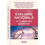 Matematica, evaluare nationala 2014. Pregatirea examenului in 12 saptamani