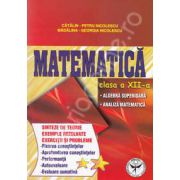 Matematica clasa a XII-a. Sinteze de teorie, exemple rezolate, exercitii si probleme.