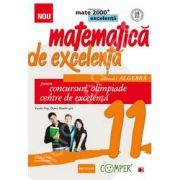 Matematica de excelenta (Mate 2000). Pentru concursuri, olimpiade si centrele de excelenta, clasa a XI-a. Volumul I. ALGEBRA