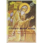 Teologia mistica poetica