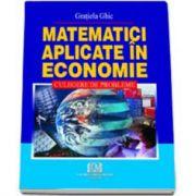 Matematici aplicate in economie. Culegere de probleme