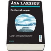 Asa Larsson, Pontonul negru