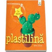 Plastilina - Arta si indemanare in 5 pasi