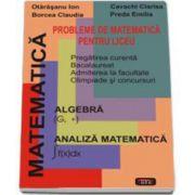 Probleme de matematica pentru liceu. Pregatirea curenta pentru Bacalaureat, Admiterea la facultate, Olimpiade si concursuri