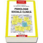 Ion Dafinoiu, Psihologie sociala clinica