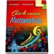Matematica caiet de vacanta pentru clasa a VI-a - Artur Balauca