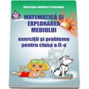 Matematica si explorarea mediului. Exercitii si probleme pentru clasa a II-a (Georghe Schneider)