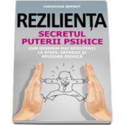 Christina Berndt, Rezilienta - Secretul puterii psihice. Cum devenim mai rezistenti la stres, depresii si epuizare psihica