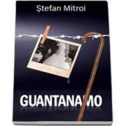 Stefan Mitroi, Guantanamo