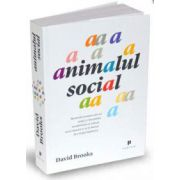 David Brooks, Animalul social