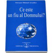 Omraam Mikhael Aivanhov, Ce este un fiu al Domnului? (Colectia Izvor)