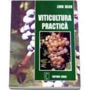 Viticultura practica (Liviu Dejeu)