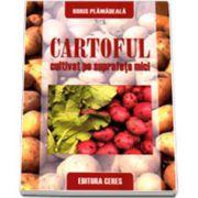 Cartoful cultivat pe suprafete mici (Boris Plamadeala)
