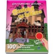 Castelul cu fantome - Cauta imaginile ascunse