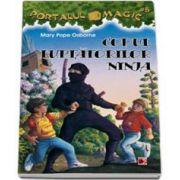 Codul luptatorilor ninja - Portalul magic 5