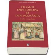 Alex Mihai Stoenescu, Tiganii din Europa si din Romania. Studiu imagologic