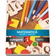 Simona Brie, Matematica - Culegere pentru clasa I