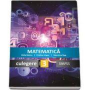 Delia Boieru, Matematica - Culegere pentru clasa a III-a