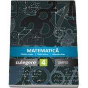 Delia Boieru, Matematica - Culegere pentru clasa a IV-a