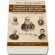Ortodoxie si luteranism in Transilvania intre Revolutia pasoptista si Marea Unire. Evolutie istorica si relatii confesionale