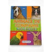 Animale de companie - Primele mele carti cu poze