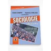 Septimiu Chelcea - Sociologie. Manual pentru clasa a XI-a
