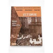 Manual de Istorie pentru clasa a XI-a - Anisoara Budici